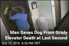 Man Saves Dog From Grisly Elevator Death at Last Second