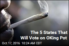 Legal Marijuana Heads to Ballot in 9 States