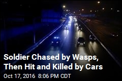 Soldier Chased by Wasps, Then Hit and Killed by Cars
