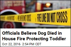 Officials Believe Dog Died in House Fire Protecting Toddler