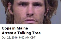Cops in Maine Arrest a Talking Tree