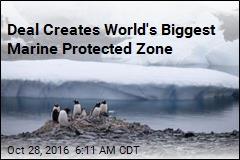 Vast Marine Reserve Created Off Antarctica