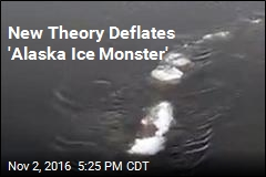 New Theory Deflates 'Alaska Ice Monster'