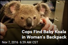Cops Find Baby Koala in Woman's Backpack