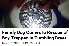 Family Dog Comes to Rescue of Boy Trapped in Tumbling Dryer