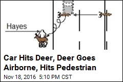 Car Hits Deer, Deer Goes Airborne, Hits Pedestrian