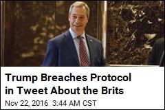 Trump Tells Brits Who He Wants for US Ambassador