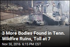 3 More Bodies Found in Tenn. Wildfire Ruins, Toll at 7