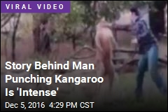 Story Behind Man Punching Kangaroo Is 'Intense'