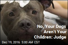 No, Your Dogs Aren't Your Children: Judge