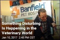 Something Disturbing Is Happening in the Veterinary World