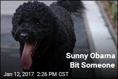 Sunny Obama Bit Someone