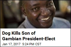 Dog Kills Son of Gambian President-Elect