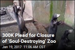 300K Plead for Closure of 'Soul-Destroying' Zoo
