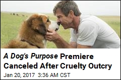 Was There Dog Cruelty On The Movie A Dog S Purpose
