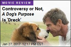 Controversy or Not, A Dog's Purpose Is 'Dreck'