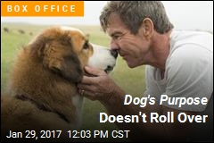 Dog's Purpose Doesn't Roll Over