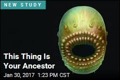 This Thing Is Your Ancestor
