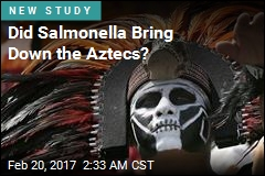 Did Salmonella Cause Outbreaks Behind Aztec Collapse?