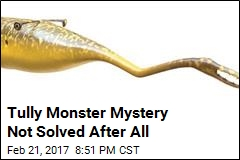 Is it a Worm? A Sea Cucumber? A Lobster? A Mystery Persists