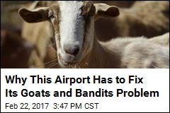 Why This Airport Has to Fix Its Goats and Bandits Problem