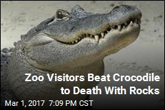 Zoo Visitors Beat Crocodile to Death With Rocks