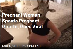 Pregnant Woman Channels Pregnant Giraffe, Goes Viral