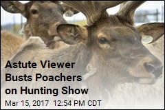 2 Hunters Sentenced for Poaching Elk for TV Show