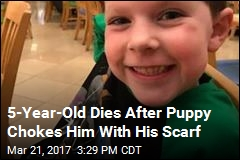 Boy, 5, Fatally Choked by Family Dog Pulling on Scarf