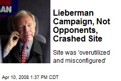 Lieberman Campaign, Not Opponents, Crashed Site