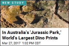 In Australia's 'Jurassic Park,' World's Largest Dino Prints