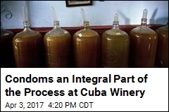 Condoms an Integral Part of the Process at Cuba Winery