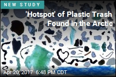 'Hotspot' of Plastic Trash Found in the Arctic