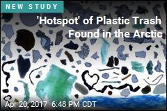 'Hotspot' of Plastic Trash Found in the Arctic