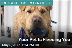Your Pet Is Fleecing You