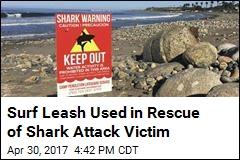 Shark Attacks Woman in Popular Cali Surf Spot