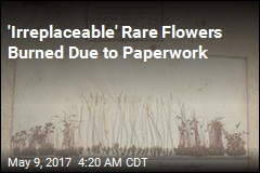 Biosecurity Officials Incinerate 'Irreplaceable' Rare Flowers