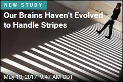 Stripes Appear to Trigger Migraines, Seizures