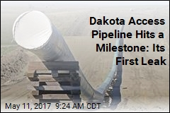 Dakota Access Pipeline Hits a Milestone: Its First Leak