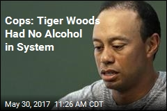 Cops: Tiger Was Asleep at the Wheel on Road
