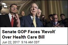 Senate Republicans Ready to Haggle Over Healthcare