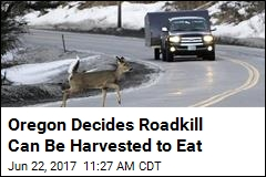 Oregon Decides Motorists Can Eat the Animal They Crash Into