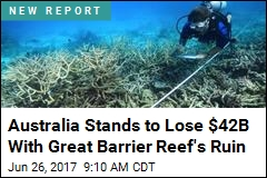 Australia Stands to Lose $42B With Great Barrier Reef's Ruin