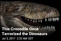 This Crocodile Once Terrorized the Dinosaurs