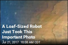 A Loaf-Sized Robot Just Took This Important Photo