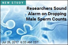Western Male Fertility Is Plummeting