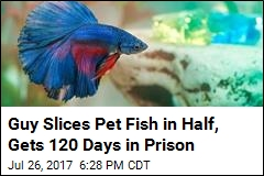 Man Who Sliced Pet Fish in Half Gets 120 Days in Prison