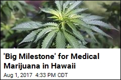 'Big Milestone' for Medical Marijuana in Hawaii