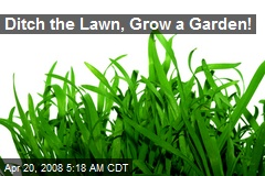 Ditch the Lawn, Grow a Garden!
