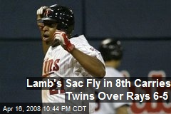 Lamb's Sac Fly in 8th Carries Twins Over Rays 6-5